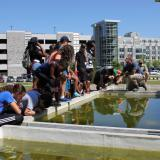 Water, Biota, and the Built Environment